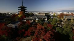 Japan is situated in East Asia between the Sea of Japan and the Pacific Ocean.