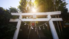 KASHIMA, JAPAN - AUGUST 04: General view of a Kashima sanctuary during the Tokyo 2020 Olympic Games on August 04, 2021 in Kashima, Japan. (Photo by Hector Vivas - FIFA/FIFA via Getty Images)